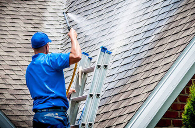 davie roof cleaning